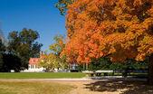 Velha casa branca emoldurada por le outono outono — Foto Stock