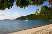 Beach and Bay on the Caribbean island of — Stock Photo