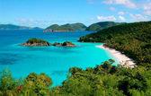 Trunk Bay on the island of St John — Stock Photo