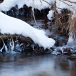 Stock Photo: Small snow lined stream