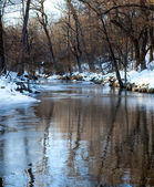 Small snow lined stream — Stock Photo