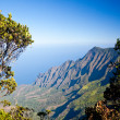 Leaves frame Na Pali Coast — Stock Photo