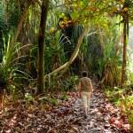 Lady hiker on path — Stock Photo
