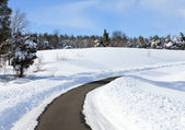 Empty road cleared of snow — Stockfoto