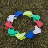 Bumerangue em uma grama — Fotografia Stock