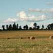 Hay bales in the sun - Stock Photo