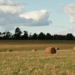 Hay bales in the sun 2 - Stock Photo