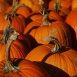 Pumpkins for sale - Stockfoto