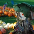 Royalty-Free Stock Photo: Pumpkin patch scarecrow