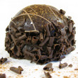 Chocolate truffle - Stock Photo
