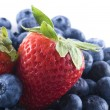 Mixed berries — Stock Photo #1029993