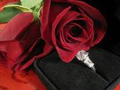 Valentine engagement — Stock Photo