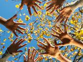 Ethnic teamwork — Stock Photo