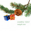 Branch of Christmas tree and gifts — Stock Photo #1694696