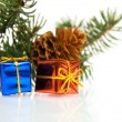 Branch of Christmas tree and gifts — Stock Photo #1694722