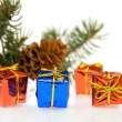 Branch of Christmas tree and gifts — Stock Photo #1694764