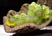 Weintrauben — Stockfoto