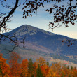 Autumn in mountains — Stock Photo #1023991