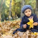 Little boy — Stock Photo #2568969
