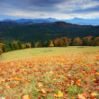 Autumn in mountains — Stock Photo