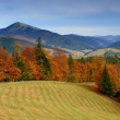 Autumn in mountains — Stock Photo #2605587