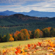 Autumn in mountains — Stock Photo #2605643