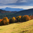 Stock Photo: Autumn in mountains