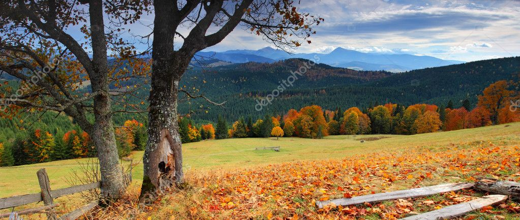 The mountain autumn landscape with colorful forest — Stock Photo #2605504