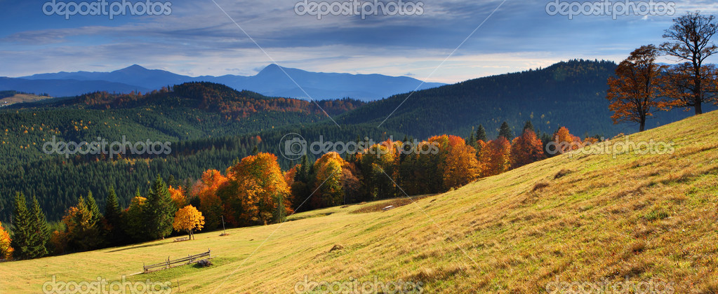 The mountain autumn landscape with colorful forest  Stock Photo #2605663
