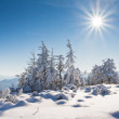 Winter in mountains — Stock Photo #2673600