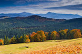 Autumn in mountains — Stockfoto