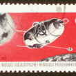 图库照片: Postage stamp from Poland.