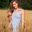 Stock Photo: Woman in field of wheat.