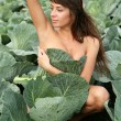 Young woman in plant of cabbage — Stock Photo