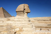 Sphinx head. — Stock Photo
