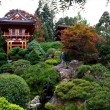 Stock Photo: Japanese TeGarden