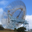 Royalty-Free Stock Photo: Big Dish