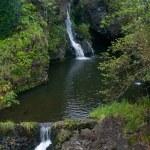 Waterfall on the Road to Hana — Stock Photo #1059123