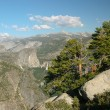 Yosemite National Park — Stock Photo #1060080