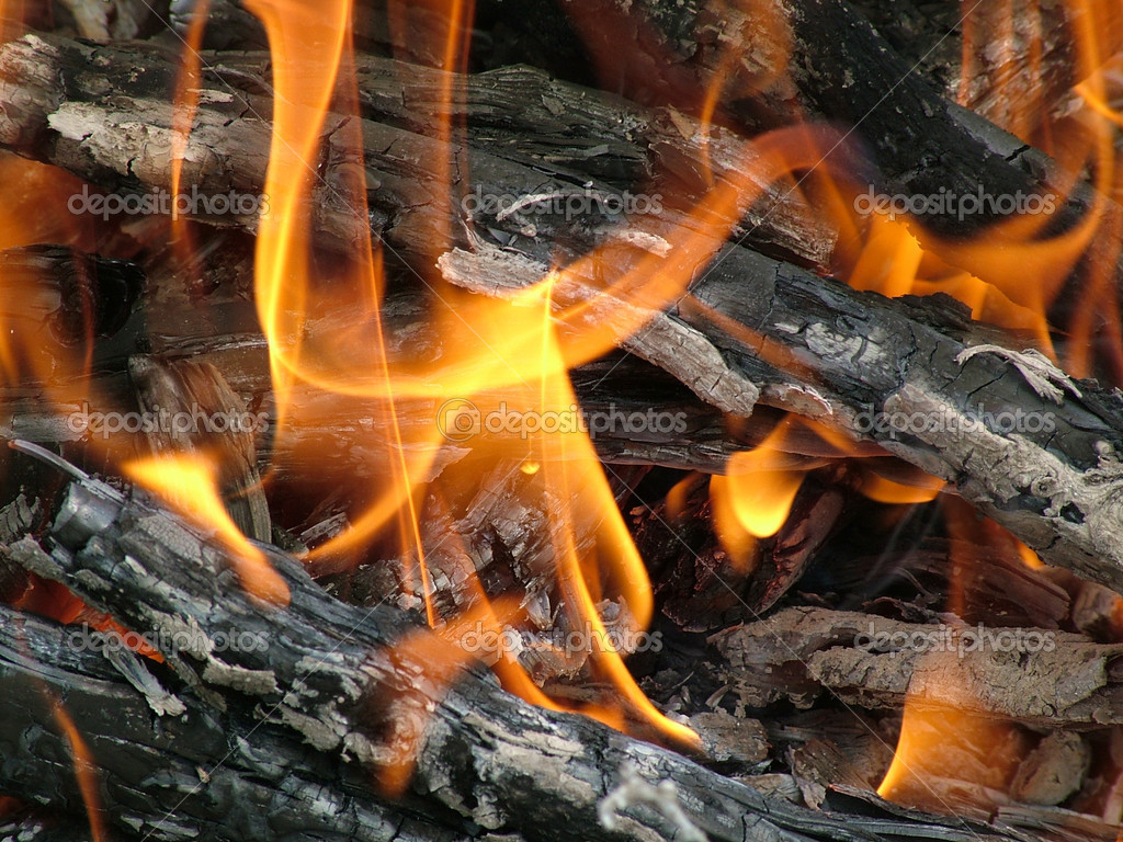 Wood burning on fire. Red and bright figures of a flame — Stock Photo #1056181