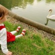 Girl and a swan — Stock Photo