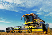 Harvesting combine in the field — Stockfoto
