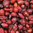 Stock Photo: Red dried hips