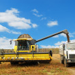 Combine harvester loading a truck in the — Foto Stock