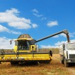 Stock Photo: Combine harvester loading a truck in the