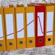Stock Photo: Color binder folders with red line diagr