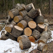 Royalty-Free Stock Photo: Stack of firewoods
