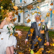 Newlywed couple in autumn park — Stok fotoğraf