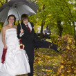 Foto Stock: Newlywed couple in autumn park