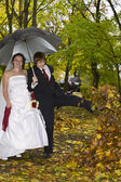 Newlywed couple in autumn park — ストック写真